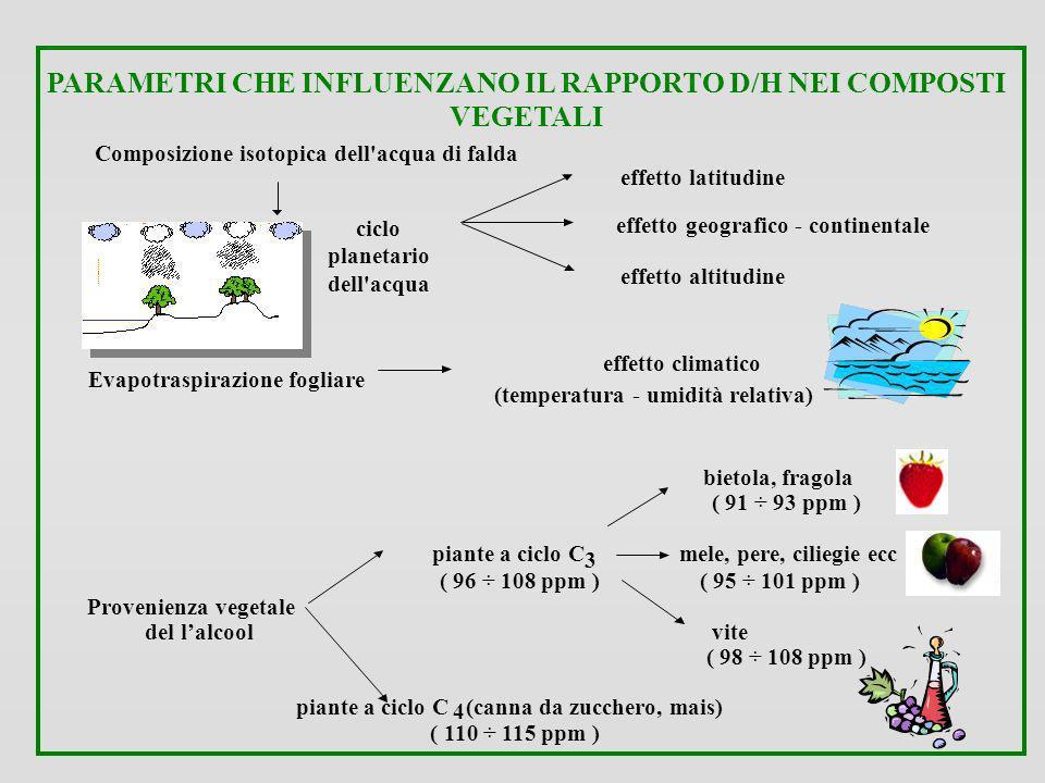 PARAMETRI CHE INFLUENZANO IL RAPPORTO D/H NEI COMPOSTI VEGETALI Composizione isotopica dell'acqua di falda effetto latitudine ciclo planetario dell'ac