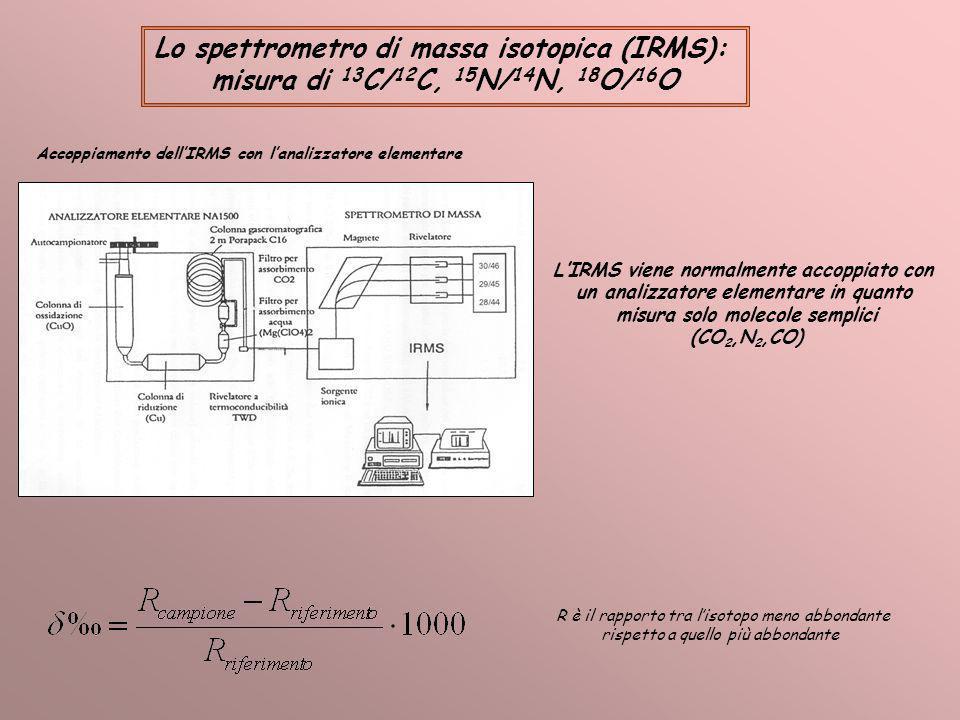 Lo spettrometro di massa isotopica (IRMS): misura di 13 C/ 12 C, 15 N/ 14 N, 18 O/ 16 O Accoppiamento dellIRMS con lanalizzatore elementare LIRMS vien