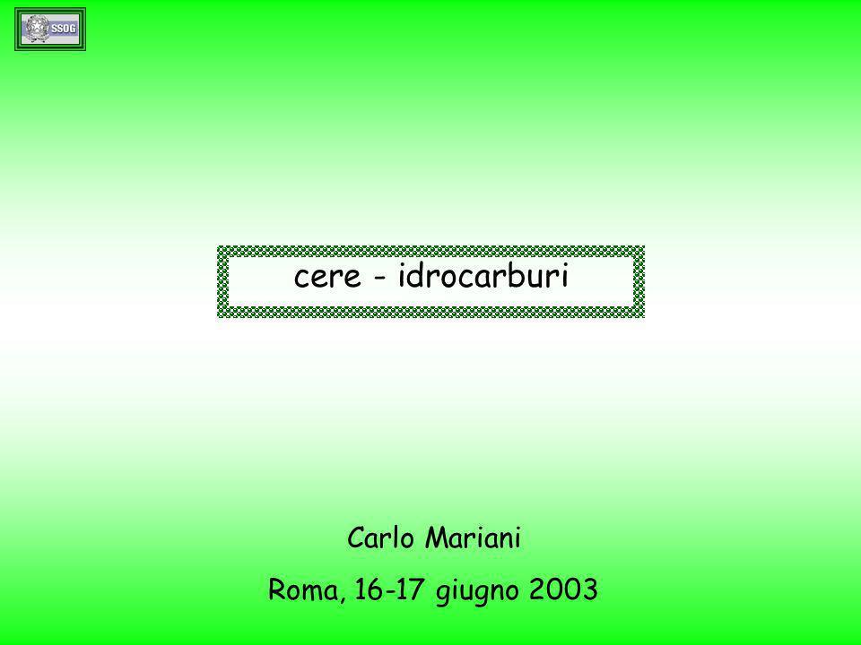 cere - idrocarburi Carlo Mariani Roma, 16-17 giugno 2003