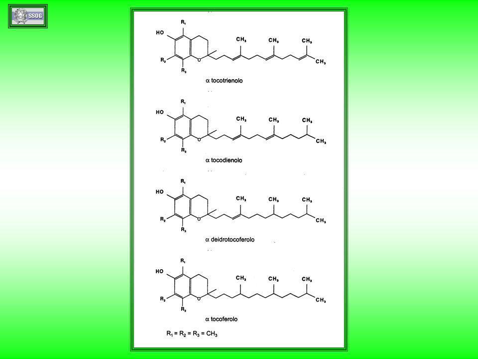 GC-MS di tocoferoli e tocotrienoli dellolio di palma