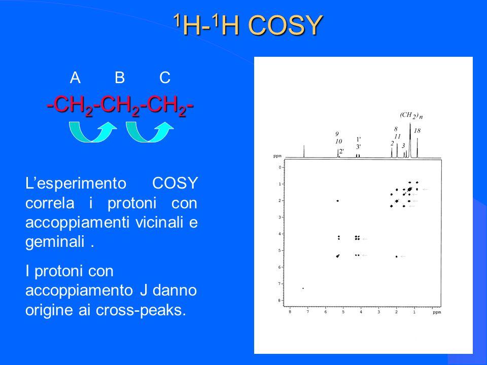 10 1 H- 1 H COSY -CH 2 -CH 2 -CH 2 - Lesperimento COSY correla i protoni con accoppiamenti vicinali e geminali. I protoni con accoppiamento J danno or