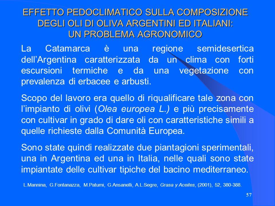 57 EFFETTO PEDOCLIMATICO SULLA COMPOSIZIONE DEGLI OLI DI OLIVA ARGENTINI ED ITALIANI: UN PROBLEMA AGRONOMICO La Catamarca è una regione semidesertica