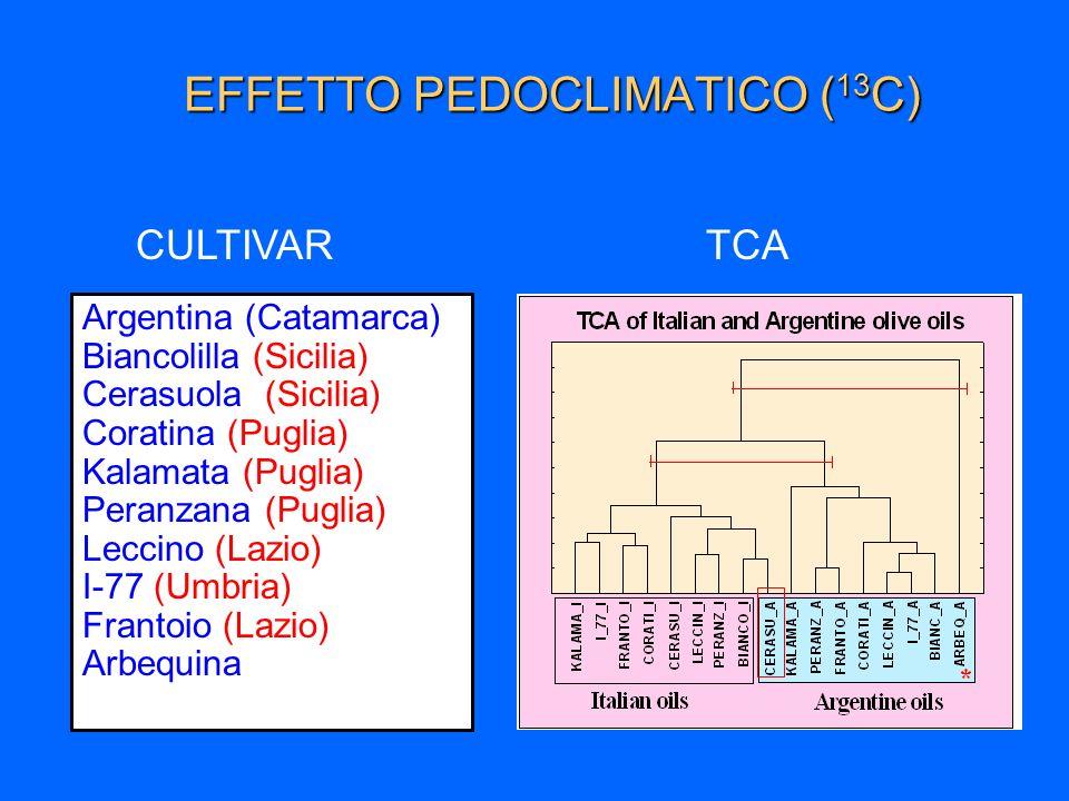 EFFETTO PEDOCLIMATICO ( 13 C) Argentina (Catamarca) Biancolilla (Sicilia) Cerasuola (Sicilia) Coratina (Puglia) Kalamata (Puglia) Peranzana (Puglia) L