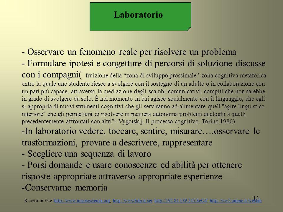 13 Laboratorio - Osservare un fenomeno reale per risolvere un problema - Formulare ipotesi e congetture di percorsi di soluzione discusse con i compag