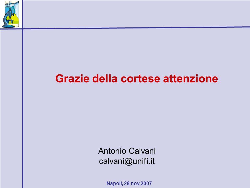 Napoli, 28 nov 2007 Grazie della cortese attenzione Antonio Calvani calvani@unifi.it