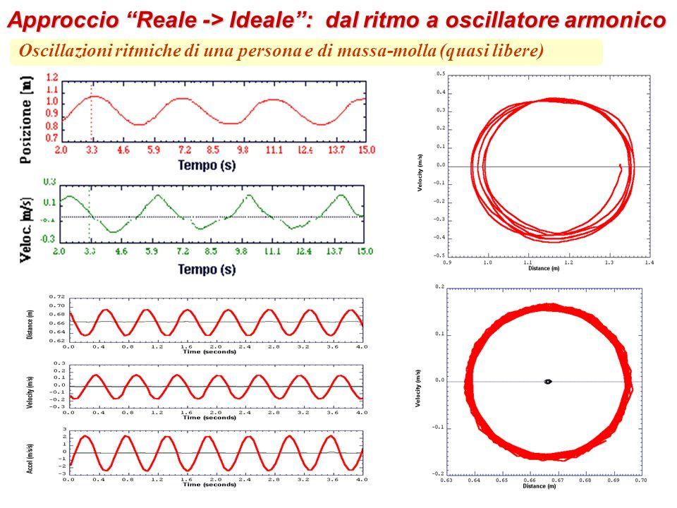Oscillazioni ritmiche di una persona e di massa-molla (quasi libere) Approccio Reale -> Ideale: dal ritmo a oscillatore armonico