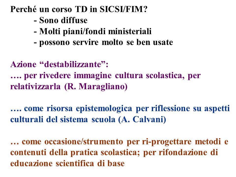Perché un corso TD in SICSI/FIM? - Sono diffuse - Molti piani/fondi ministeriali - possono servire molto se ben usate Azione destabilizzante: …. per r