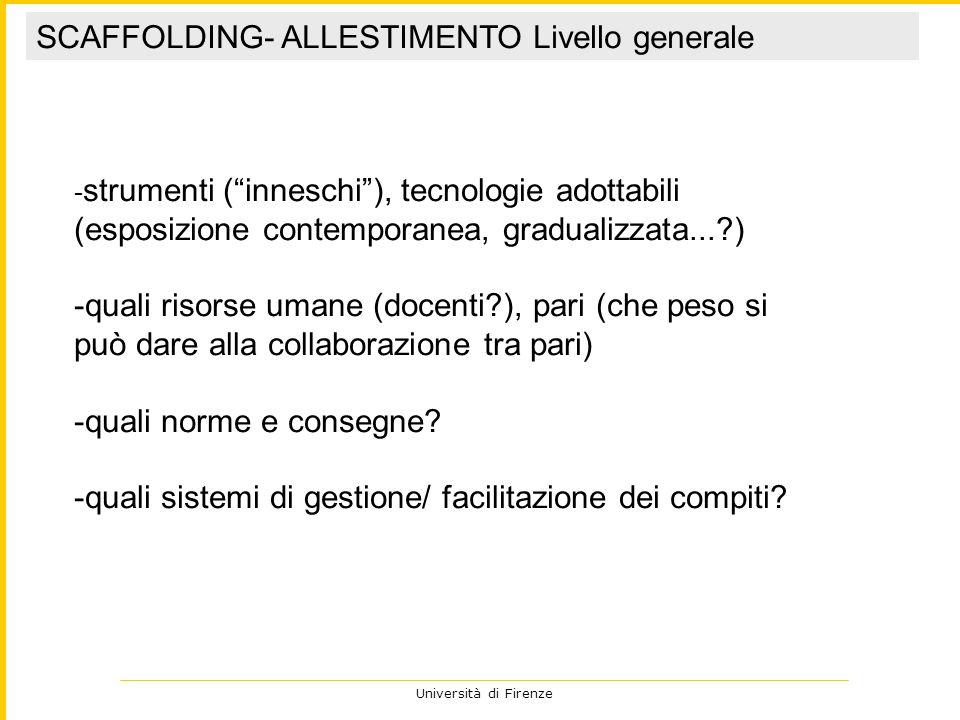 Università di Firenze - strumenti (inneschi), tecnologie adottabili (esposizione contemporanea, gradualizzata...?) -quali risorse umane (docenti?), pa