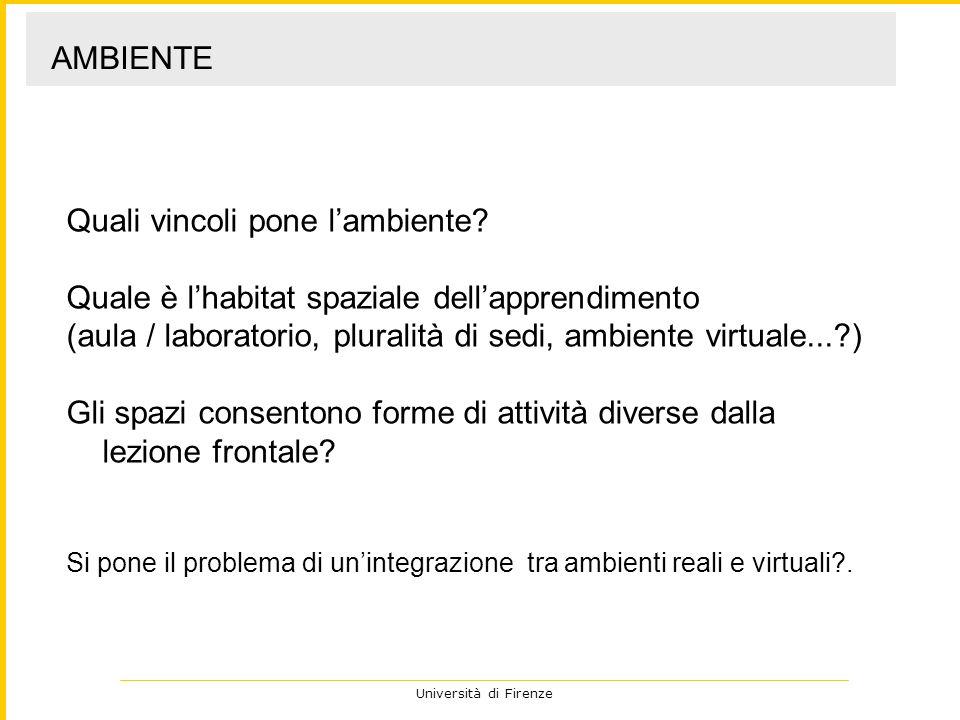 Università di Firenze Quali vincoli pone lambiente? Quale è lhabitat spaziale dellapprendimento (aula / laboratorio, pluralità di sedi, ambiente virtu