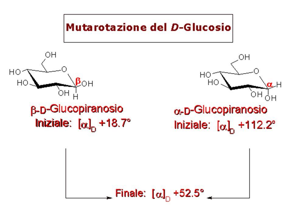 Dopo evaporazione: D-glucosio (in acqua) -D-glucopiranosio Pf.