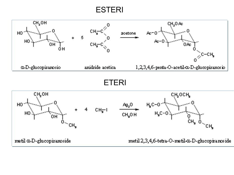 GLICOSIDI Alfa/beta-D-glucopiranosio + + H 2 O H2OH2O (aglicone) Il legame glicosidico impedisce la formazione dellequilibrio fra gli anomeri.