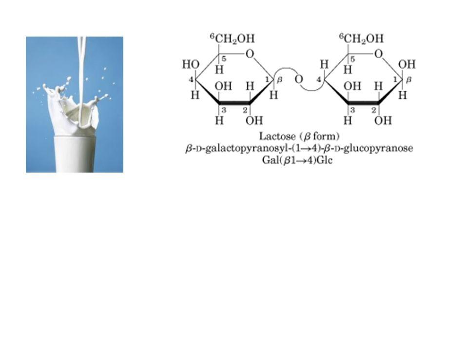 Il saccarosio è un disaccaride e probabilmente è il composto organico prodotto in maggiore quantità in forma pura.