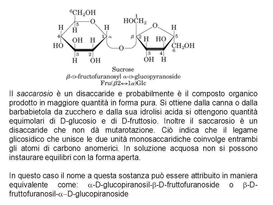 Il saccarosio è un disaccaride e probabilmente è il composto organico prodotto in maggiore quantità in forma pura. Si ottiene dalla canna o dalla barb
