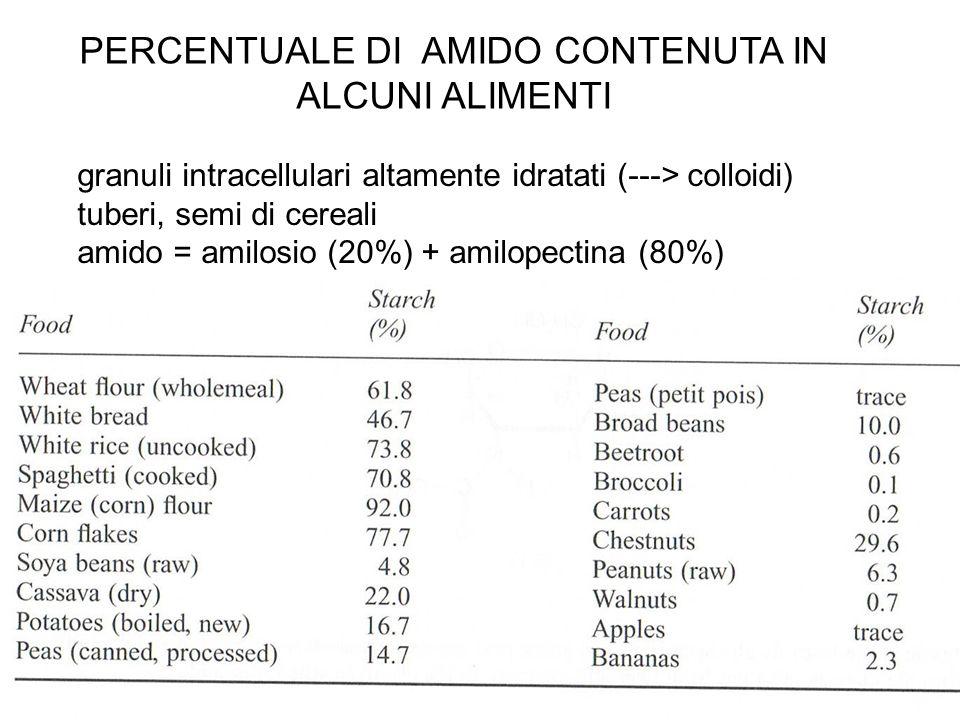 PERCENTUALE DI AMIDO CONTENUTA IN ALCUNI ALIMENTI granuli intracellulari altamente idratati (---> colloidi) tuberi, semi di cereali amido = amilosio (