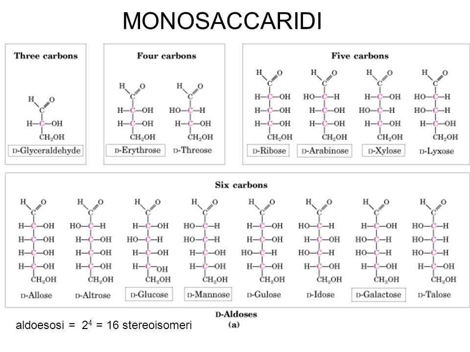chetoesosi = 2 3 = 8 stereoisomeri