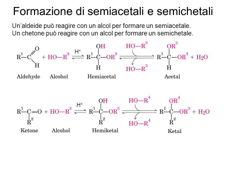 Formazione di semiacetali e semichetali 0,024% 64%36% prevalenza di forme cicliche in soluzione acquose Pentosi ed esosi possono ciclizzare attraverso la reazione tra un OH e il gruppo chetonico.