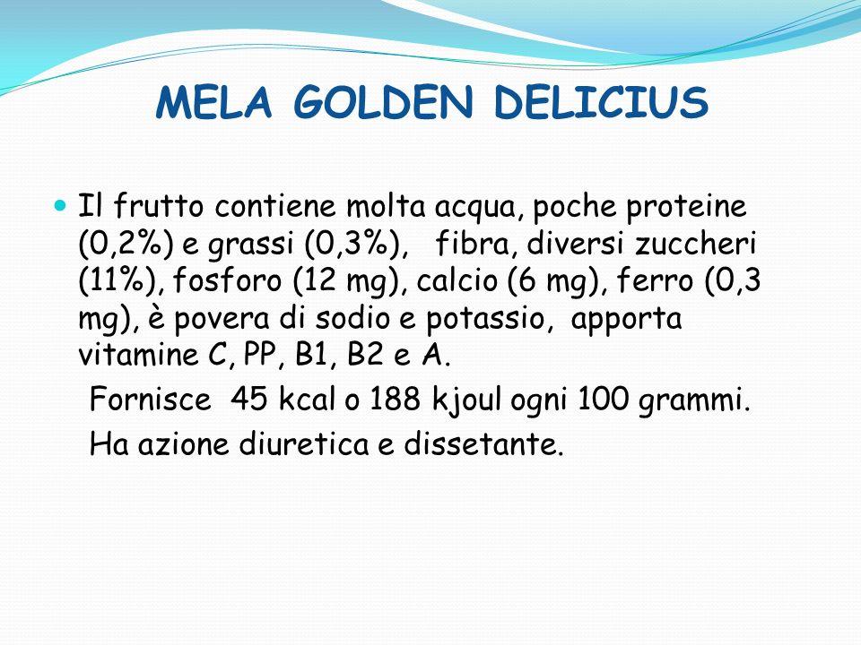 MELA BRAEBURN Ogni 100 grammi di prodotto commestibile mediamente contengono: circa 85 grammi dacqua, 0,2 grammi di proteine, 0,1 grammi di grassi, 11 grammi di zuccheri di diverso tipo, tra cui fruttosio, glucosio e saccarosio, 2 grammi di fibre, per un totale di circa 45-50 chilo calorie o 11-12 chilojoule, e circa 4 grammi di sali minerali tra cui potassio, zolfo, fosforo, calcio, magnesio, sodio, ferro, oltre a tracce di rame, iodio, zinco manganese, e silicio.