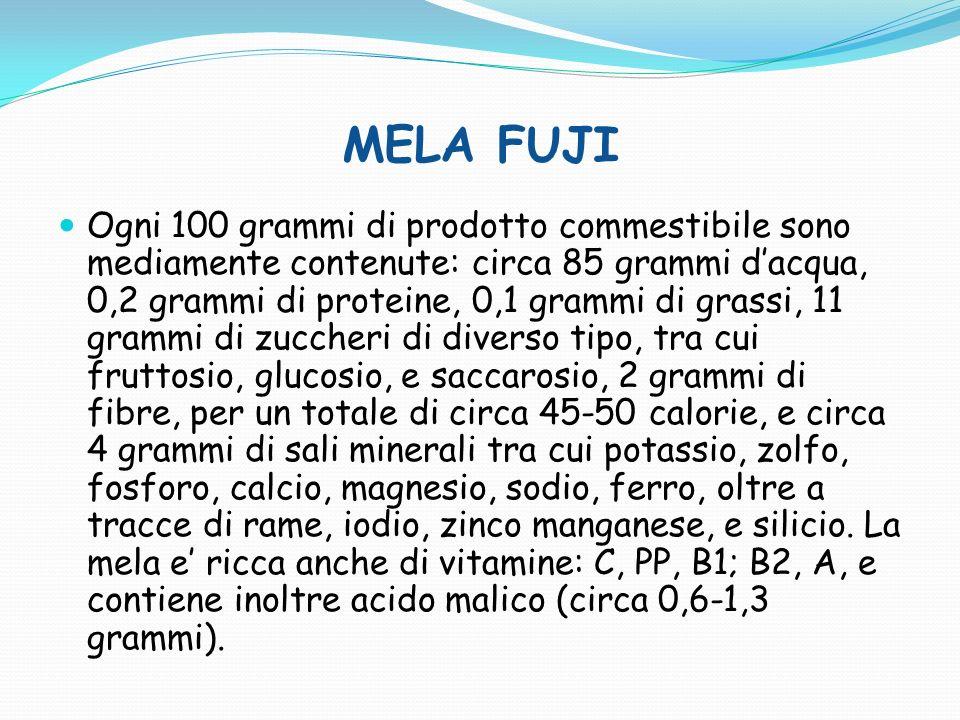 MELA GALA Ogni 100 grammi di prodotto commestibile sono mediamente contenute: circa 85 grammi dacqua, 0,2 grammi di proteine, 0,1 grammi di grassi, 11 grammi di zuccheri di diverso tipo, tra cui fruttosio, glucosio, e saccarosio, 2 grammi di fibre, per un totale di circa 45-50 calorie, e circa 4 grammi di sali minerali tra cui potassio, zolfo, fosforo, calcio, magnesio, sodio, ferro, oltre a tracce di rame, iodio, zinco manganese, e silicio.