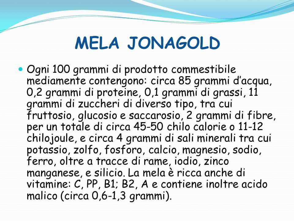 MELA FUJI Ogni 100 grammi di prodotto commestibile sono mediamente contenute: circa 85 grammi dacqua, 0,2 grammi di proteine, 0,1 grammi di grassi, 11 grammi di zuccheri di diverso tipo, tra cui fruttosio, glucosio, e saccarosio, 2 grammi di fibre, per un totale di circa 45-50 calorie, e circa 4 grammi di sali minerali tra cui potassio, zolfo, fosforo, calcio, magnesio, sodio, ferro, oltre a tracce di rame, iodio, zinco manganese, e silicio.
