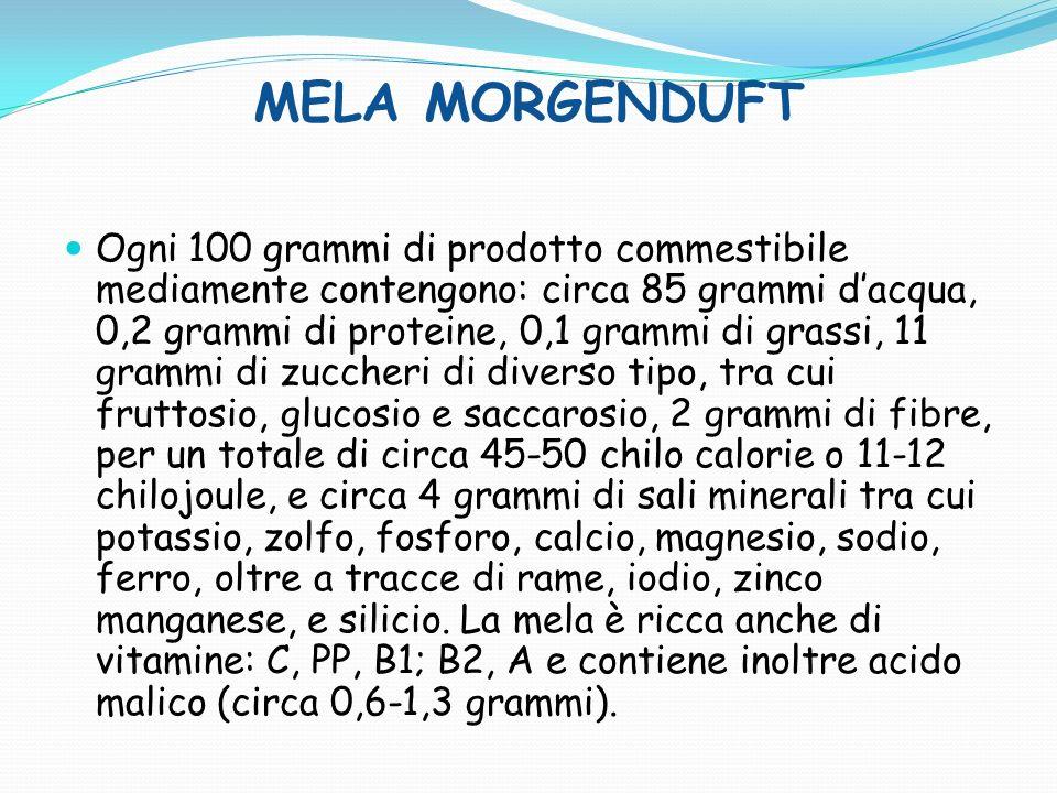 MELA JONAGOLD Ogni 100 grammi di prodotto commestibile mediamente contengono: circa 85 grammi dacqua, 0,2 grammi di proteine, 0,1 grammi di grassi, 11 grammi di zuccheri di diverso tipo, tra cui fruttosio, glucosio e saccarosio, 2 grammi di fibre, per un totale di circa 45-50 chilo calorie o 11-12 chilojoule, e circa 4 grammi di sali minerali tra cui potassio, zolfo, fosforo, calcio, magnesio, sodio, ferro, oltre a tracce di rame, iodio, zinco manganese, e silicio.