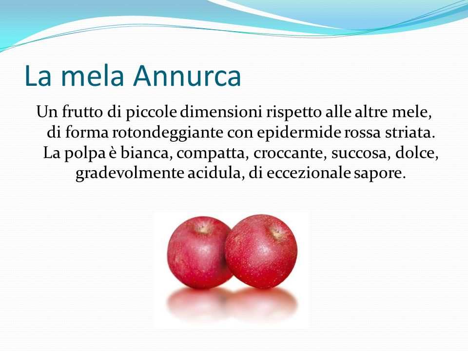 Vari tipi di mela: Mela Annurca Braeburn Fuji Golden Delicious Granny Smith Renetta Grigia Royal Gala Stayman Winesap