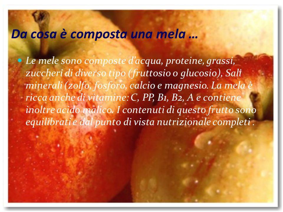 La mela è un frutto originario dellAsia centrale e occidentale, diffuso in Europa fin dai tempi più remoti.