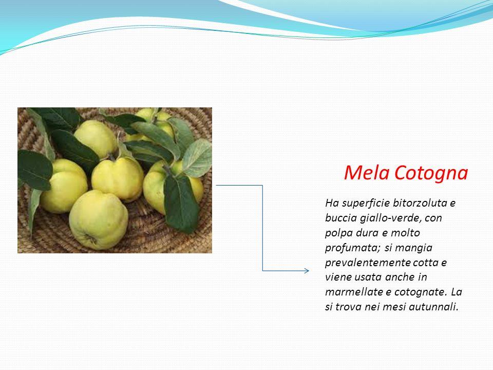 Annurca E piccola e schiacciata, coltivata soprattutto in Campania.