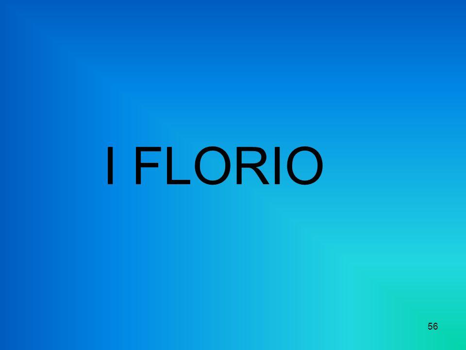 I FLORIO 56
