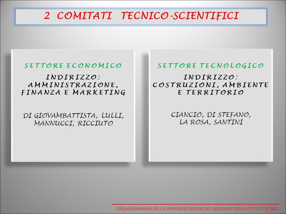 SETTORE ECONOMICO INDIRIZZO: AMMINISTRAZIONE, FINANZA E MARKETING DI GIOVAMBATTISTA, LULLI, MANNUCCI, RICCIUTO SETTORE ECONOMICO INDIRIZZO: AMMINISTRAZIONE, FINANZA E MARKETING DI GIOVAMBATTISTA, LULLI, MANNUCCI, RICCIUTO SETTORE TECNOLOGICO INDIRIZZO: COSTRUZIONI, AMBIENTE E TERRITORIO CIANCIO, DI STEFANO, LA ROSA, SANTINI SETTORE TECNOLOGICO INDIRIZZO: COSTRUZIONI, AMBIENTE E TERRITORIO CIANCIO, DI STEFANO, LA ROSA, SANTINI 2 COMITATI TECNICO-SCIENTIFICI ORGANIGRAMMA DELLA SPERIMENTAZIONE DEL RIORDINO DEGLI ISTITUTI TECNICI