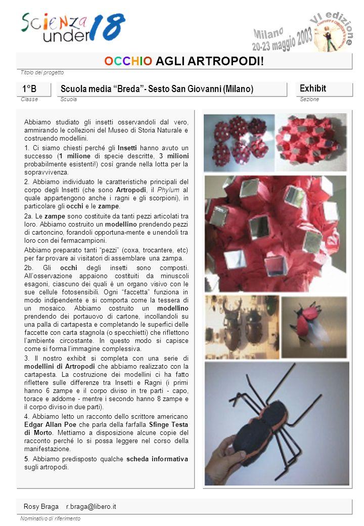 Titolo del progetto Classe ScuolaSezione Nominativo di riferimento OCCHIO AGLI ARTROPODI! Scuola media Breda- Sesto San Giovanni (Milano) Exhibit Abbi