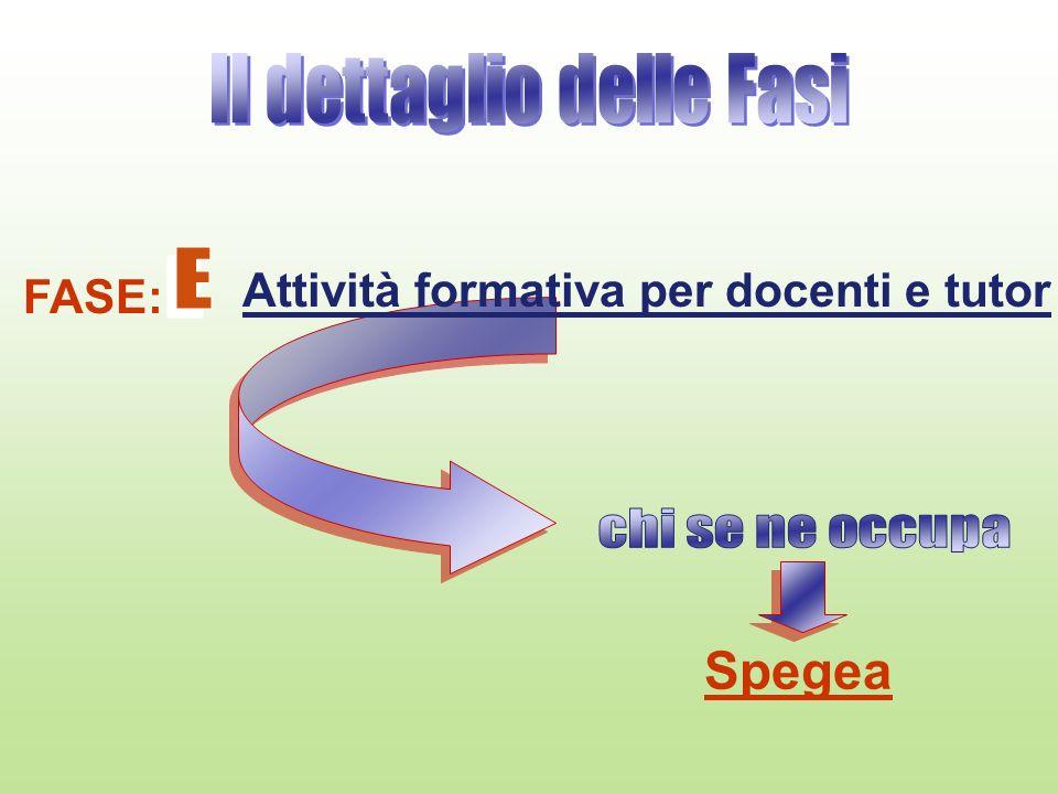 FASE: Attività formativa per docenti e tutor Spegea