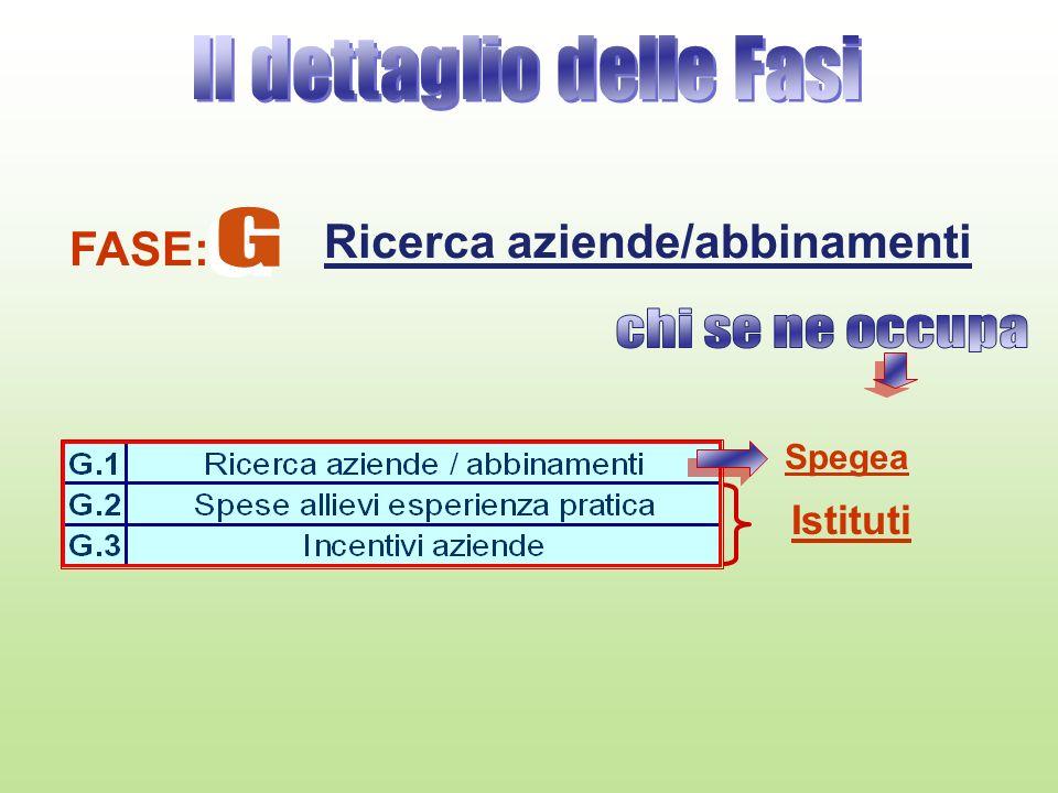 FASE: Ricerca aziende/abbinamenti Istituti Spegea