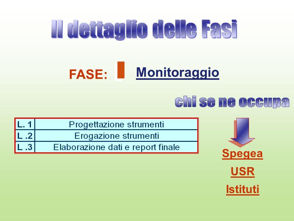 FASE: Monitoraggio Spegea USR Istituti
