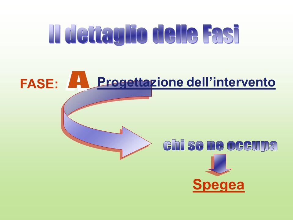 FASE: Progettazione dellintervento Spegea