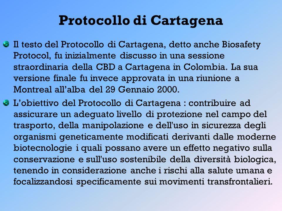 Protocollo di Cartagena Il testo del Protocollo di Cartagena, detto anche Biosafety Protocol, fu inizialmente discusso in una sessione straordinaria d