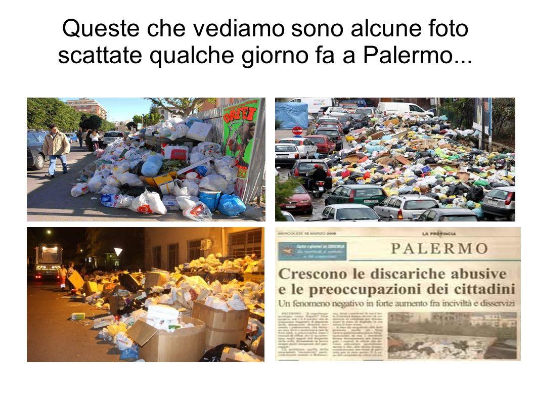 Queste che vediamo sono alcune foto scattate qualche giorno fa a Palermo...