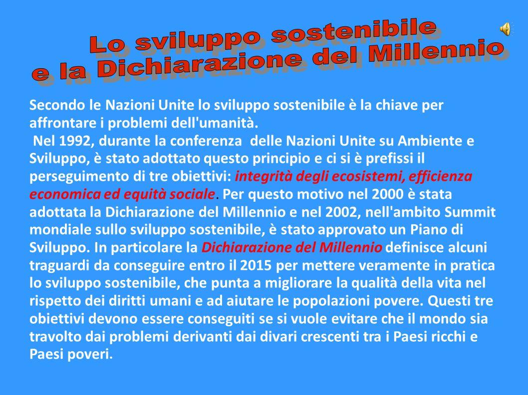 Secondo le Nazioni Unite lo sviluppo sostenibile è la chiave per affrontare i problemi dell'umanità. Nel 1992, durante la conferenza delle Nazioni Uni