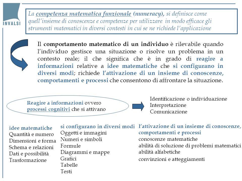 La definizione di numeracy sottolinea le caratteristiche della funzionalità che si adattano meglio ad interpretare questa competenza nella vita adulta, cercando di superare i concetti che si limitano ad indicare la sola conoscenza della matematica scolastica.