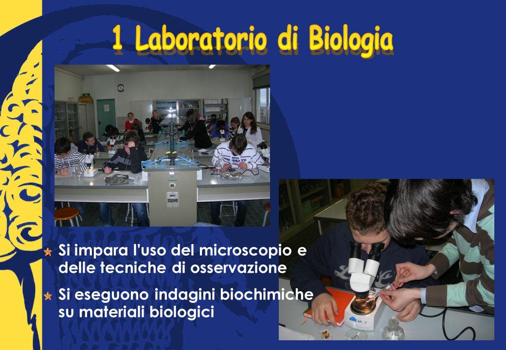 Si impara l uso del microscopio e delle tecniche di osservazione Si eseguono indagini biochimiche su materiali biologici
