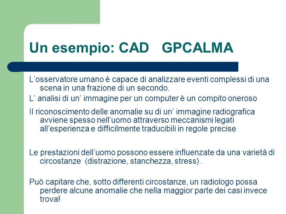 Un esempio: CAD GPCALMA Losservatore umano è capace di analizzare eventi complessi di una scena in una frazione di un secondo. L analisi di un immagin