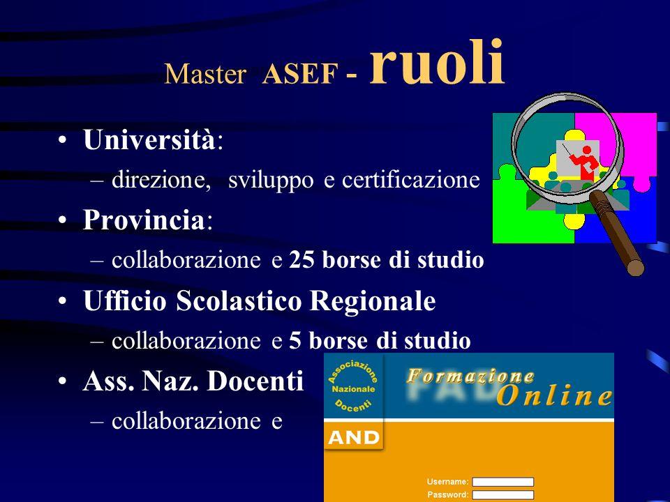 Master ASEF - ruoli Università: –direzione, sviluppo e certificazione Provincia: –collaborazione e 25 borse di studio Ufficio Scolastico Regionale –co