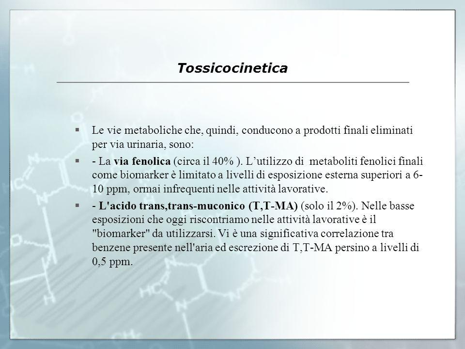 Tossicocinetica Le vie metaboliche che, quindi, conducono a prodotti finali eliminati per via urinaria, sono: - La via fenolica (circa il 40% ). Lutil