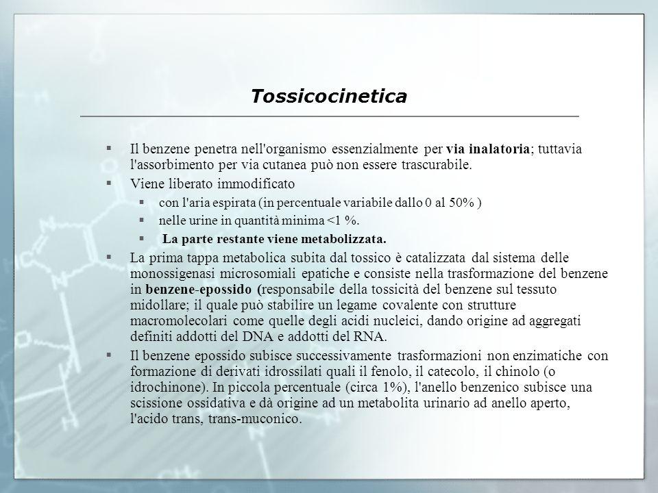 Tossicocinetica Il benzene penetra nell'organismo essenzialmente per via inalatoria; tuttavia l'assorbimento per via cutanea può non essere trascurabi