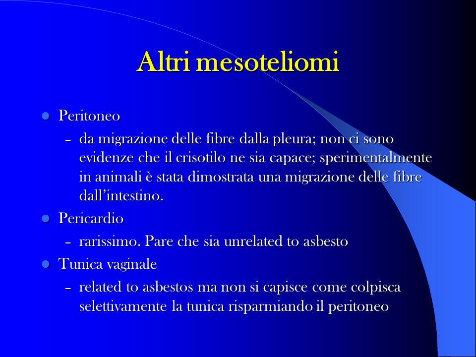 Altri mesoteliomi Peritoneo Peritoneo – da migrazione delle fibre dalla pleura; non ci sono evidenze che il crisotilo ne sia capace; sperimentalmente