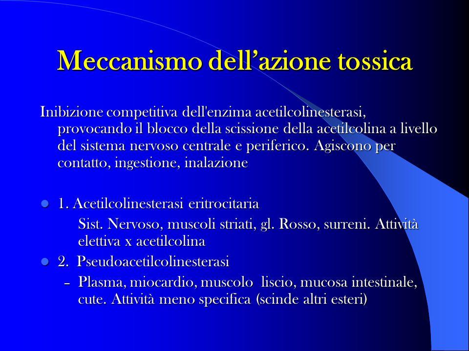 Meccanismo dellazione tossica Inibizione competitiva dell'enzima acetilcolinesterasi, provocando il blocco della scissione della acetilcolina a livell