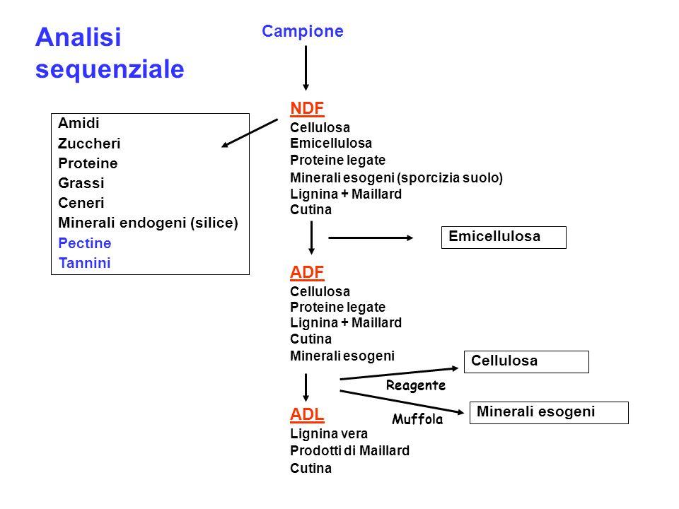 Amidi Zuccheri Proteine Grassi Ceneri Minerali endogeni (silice) Pectine Tannini NDF Cellulosa Emicellulosa Proteine legate Minerali esogeni (sporcizi