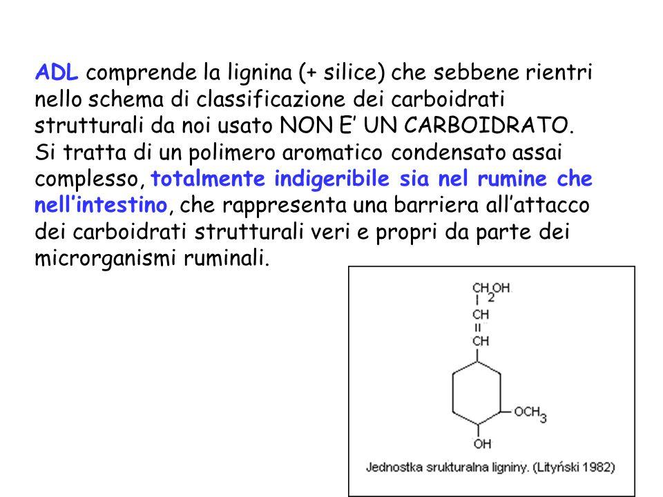 ADL comprende la lignina (+ silice) che sebbene rientri nello schema di classificazione dei carboidrati strutturali da noi usato NON E UN CARBOIDRATO.