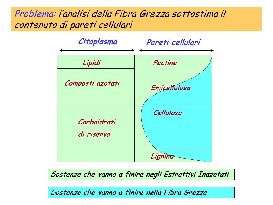 Lipidi Composti azotati Carboidrati di riserva Pectine Citoplasma Pareti cellulari Emicellulosa Cellulosa Lignina Sostanze che vanno a finire negli Es