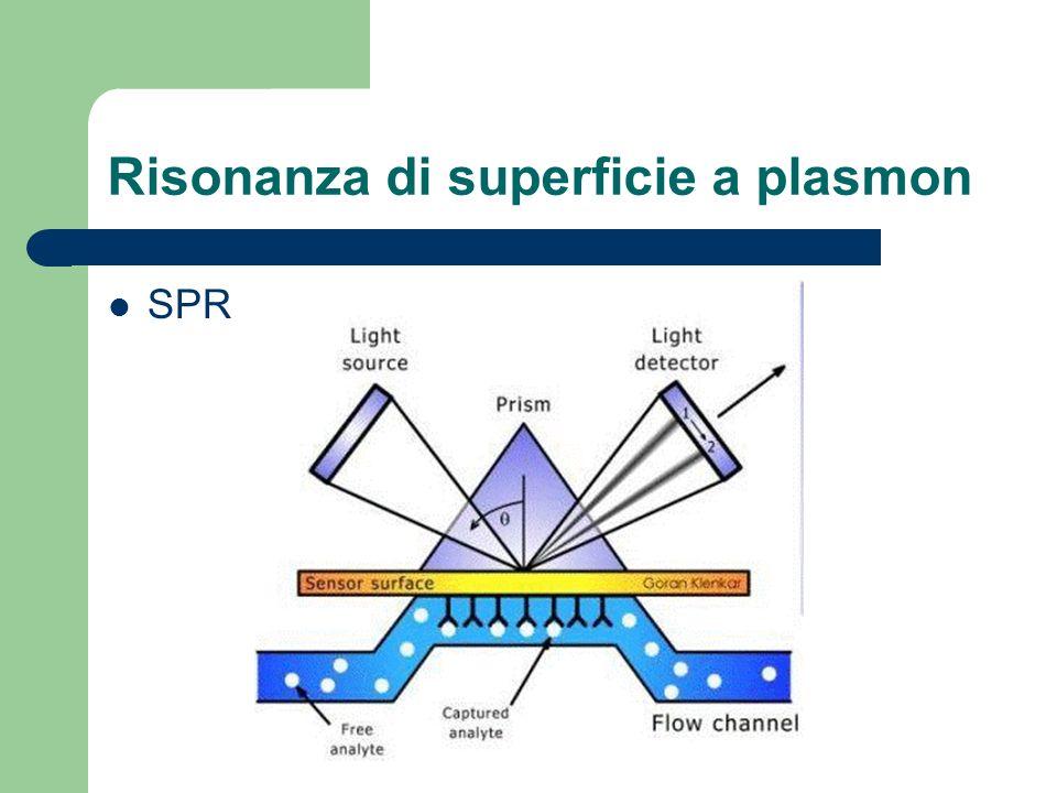 Risonanza di superficie a plasmon SPR