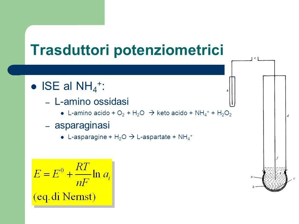 Trasduttori potenziometrici ISE al NH 4 + : – L-amino ossidasi L-amino acido + O 2 + H 2 O keto acido + NH 4 + + H 2 O 2 – asparaginasi L-asparagine +